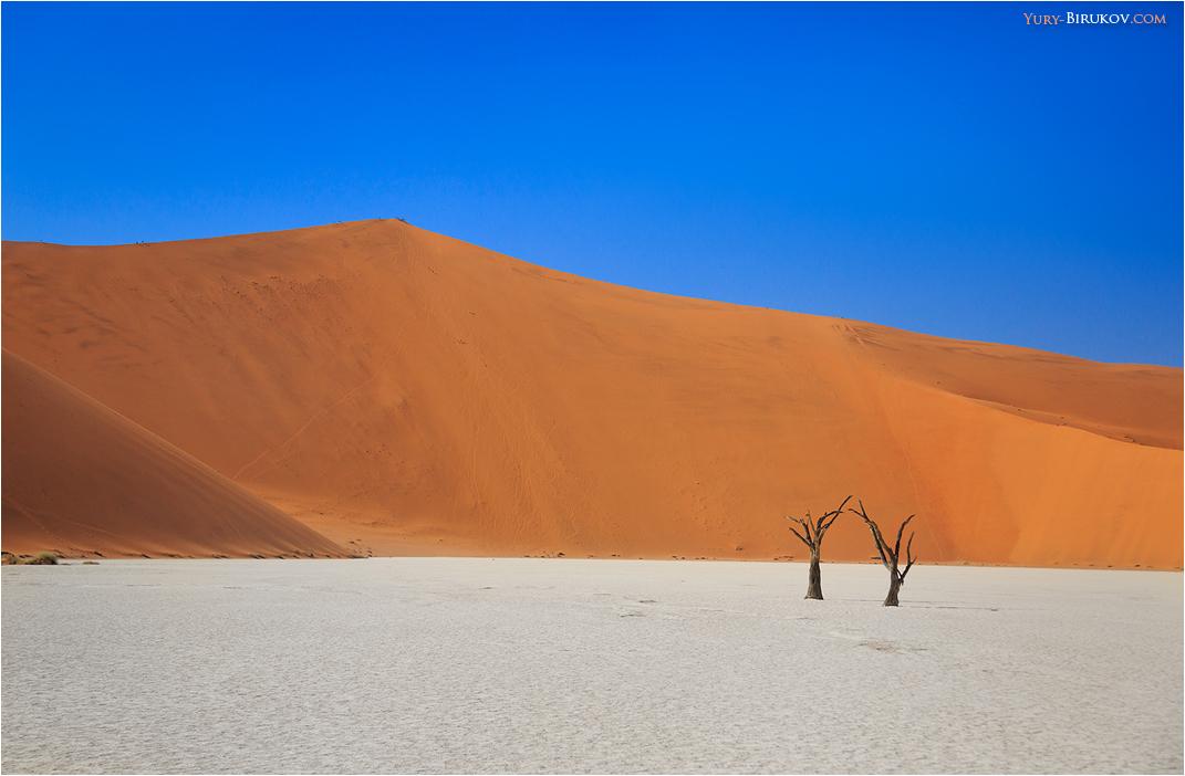 Namibia - Минималистские пейзажи в Deadvlei (пустыня Намиб)