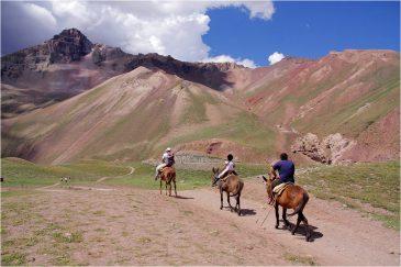 Единственный транспорт на узких тропинках в Андах - лошади и мулы. Аргентина