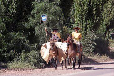Гаучо - южноамериканские ковбои. Аргентина