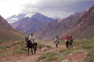 На тропинках в Андах обеспеченные туристы передвигаются на лошадях. Аргентина