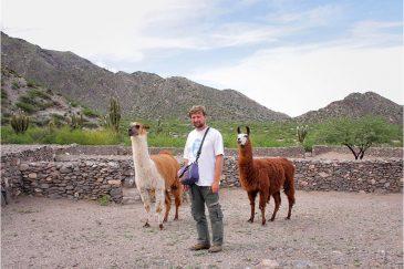 С парочкой забавных лам в северной Аргентине