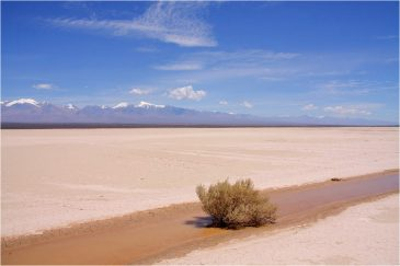 Высохшее озеро у подножия Анд. Аргентина