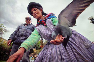 Голуби на площади Мурийо в Ла-Пасе. Боливия