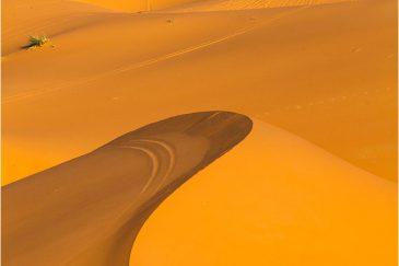 Пески пустыни Сахара