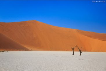 Пейзажи в Deadvlei (пустыня Намиб)