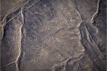 Загадочные рисунки пустыни Наска