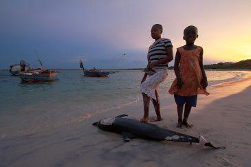 Дети и мертвый дельфин в деревне Килва Масоко на берегу Индийского океана