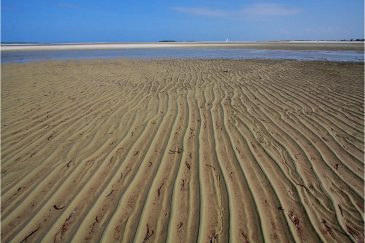 Морской отлив на пляже севернее Дар-эс-Салама