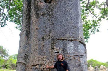На фоне танзанийского баобаба