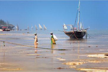 Восточное побережье острова Занзибар