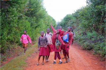 Дети Зимбабве в горах Чиманимани