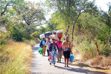 Поход на рынок в Зимбабве