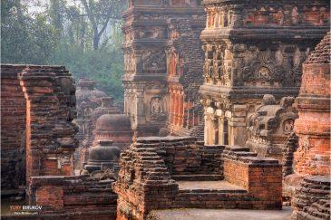 Руины древнего буддистского университета Наланда в штате Бихар