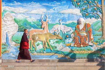 Монастырь Лингдум возле Гангтока, столицы горного штата Сикким