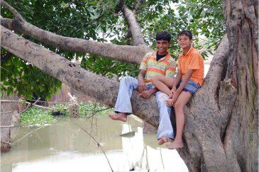 Босяки на дереве где-то в восточной Индии