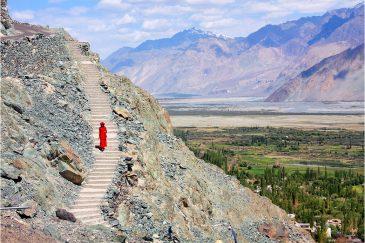 Одинокий монах в долине Нубра. Ладакх. Индия