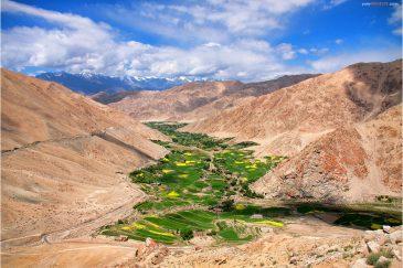 Островки зелени среди гор. Дорога в долину Нубра в Ладакхе. Индия