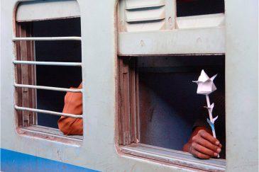 Рука в индийском поезде