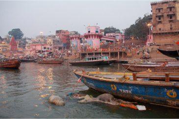 В водах Ганги в Варанаси плавают трупы людей и животных. Индия