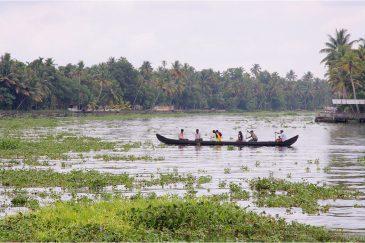 Обширные лабиринты озер, речек и протоков в штате Керала. Индия