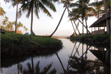Пальмовая геометрия в Варкале, штат Керала. Индия