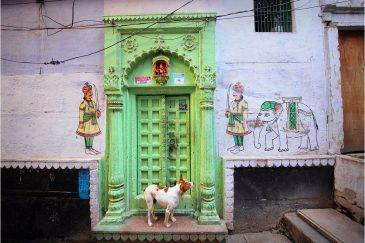 Ценитель искусства на улицах Варанаси. Штат Уттар-Прадеш. Индия