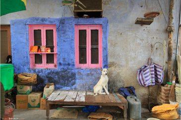 На улице Старого Дели. Индия