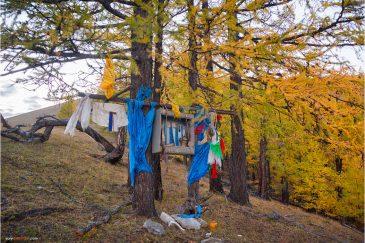 Небольшой шаманский алтарь в лесу у озера Хубсугул. Монголия