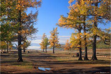 Осень в северной Монголии