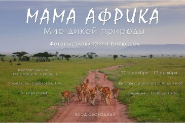 Мама Африка II: Мир дикой природы