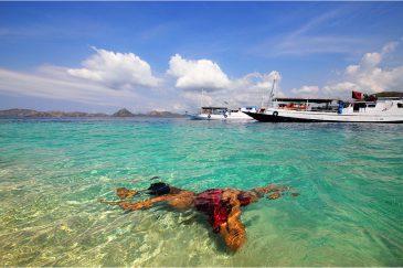 Кристальная вода моря Флорес. Пляж у побережья острова Комодо