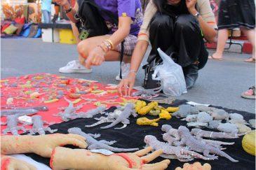 Трудный выбор на уличном рынке в Чианг Мае