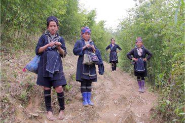Черные Хмонги в бамбуковом лесу