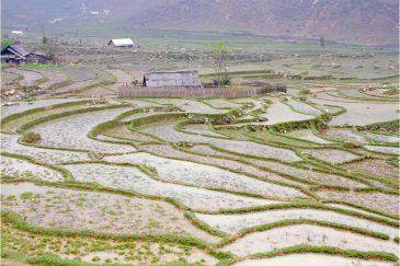 Рисовые поля в горных деревушках