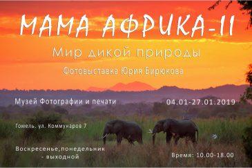 Фотовыставка Мама Африка II: Мир дикой природы