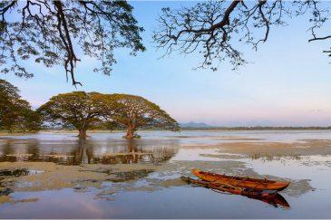 Озеро в городке Тиссамахарама
