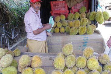 Самый вонючий фрукт на земле - дуриан