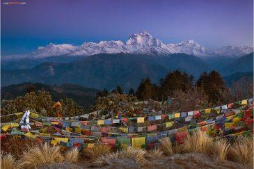 Восьмитысячник Дхаулагири перед восходом солнца с вершины Poon Hill