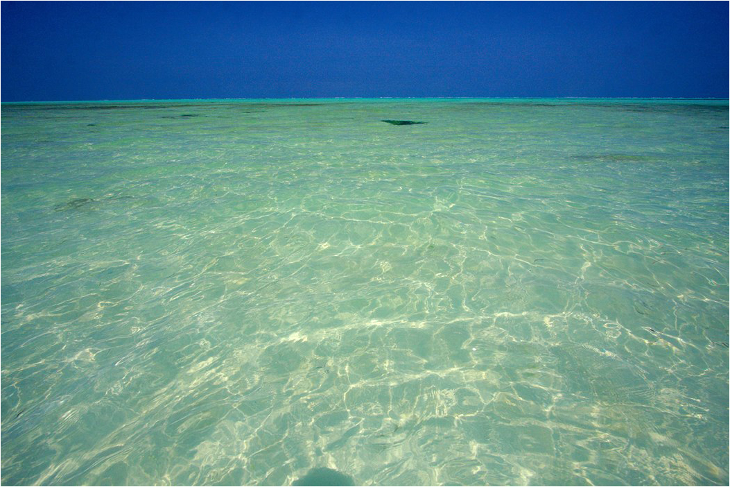 Tanzania1 - Дзен-фотография про воду Занзибара